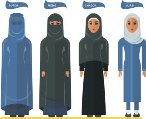Dutch Burka ban diagram