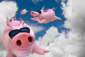 pigs flying as Rotterdam bans fireworks