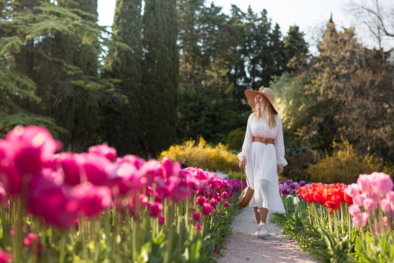 Influencers Angry at Ban on Covidiots Visiting Tulip Fields